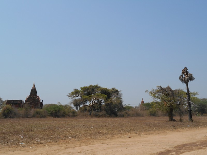This is the 1st day I will be exploring the temples of Bagan. An e-bike, or electric scooter, is the main mean of transport tourists use to explore Bagan.