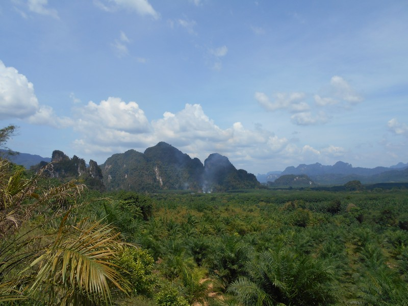 Going from Khao Sok to Bangkok by train