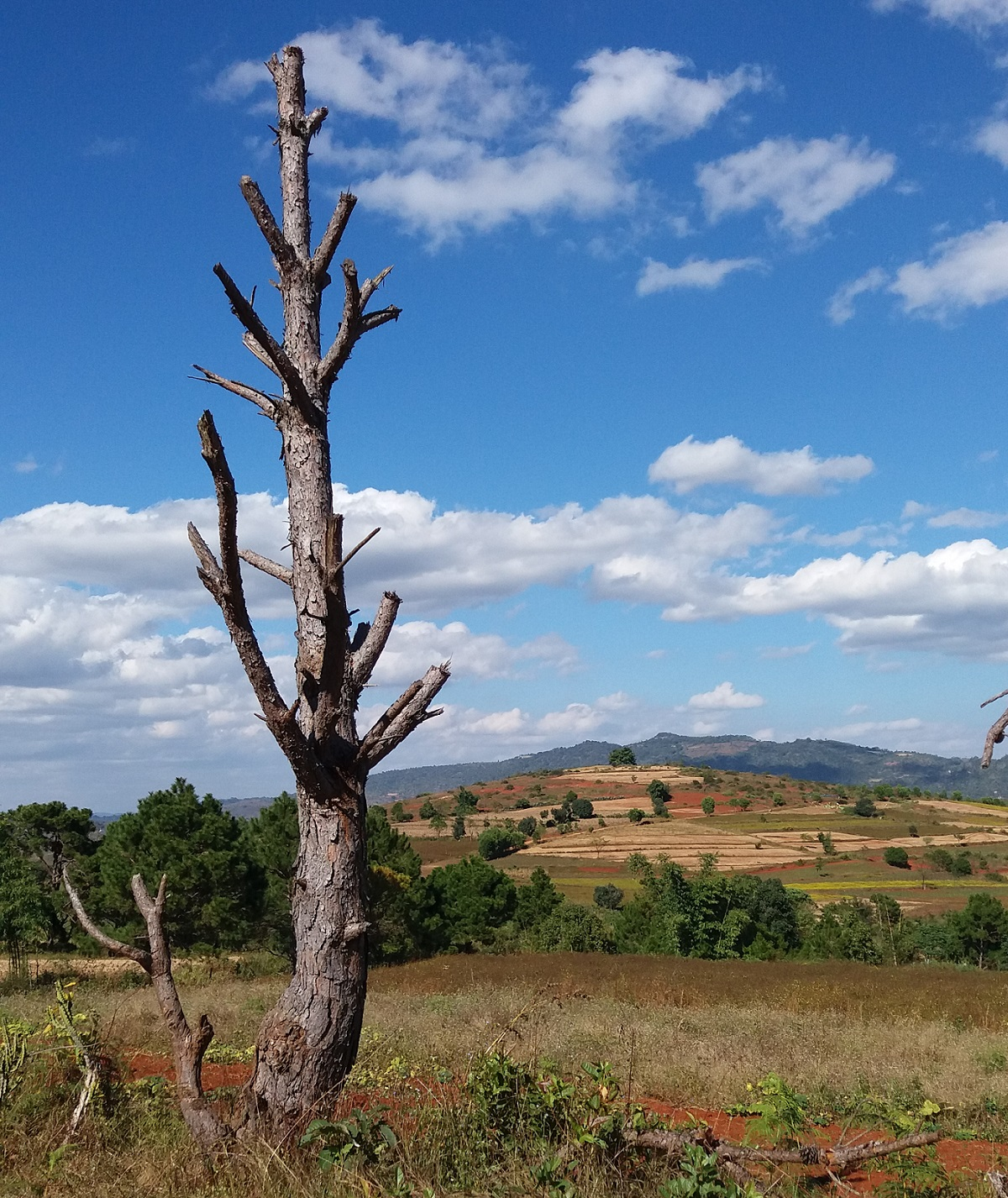 Trekking from Inle Lake to Kalaw