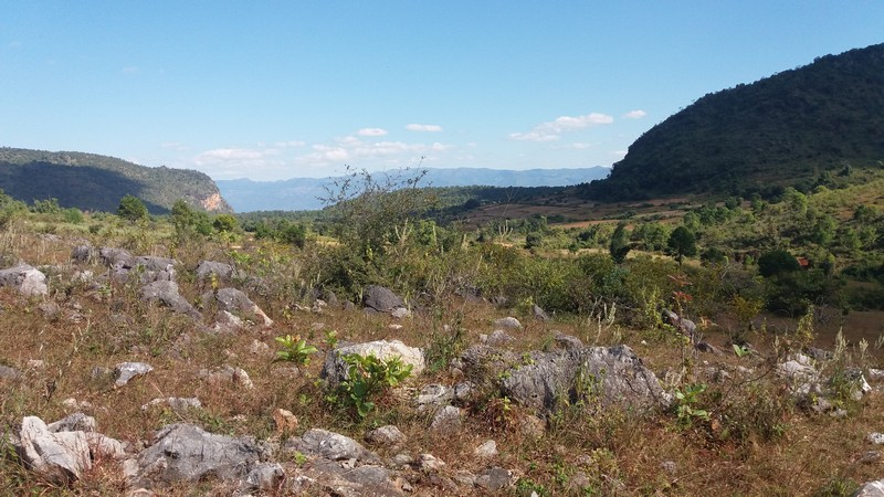 I really wanted to do this trekking from Inle Lake to Kalaw, but it seems that not many people do it. It is easier the opposite way, from Kalaw to Inle.