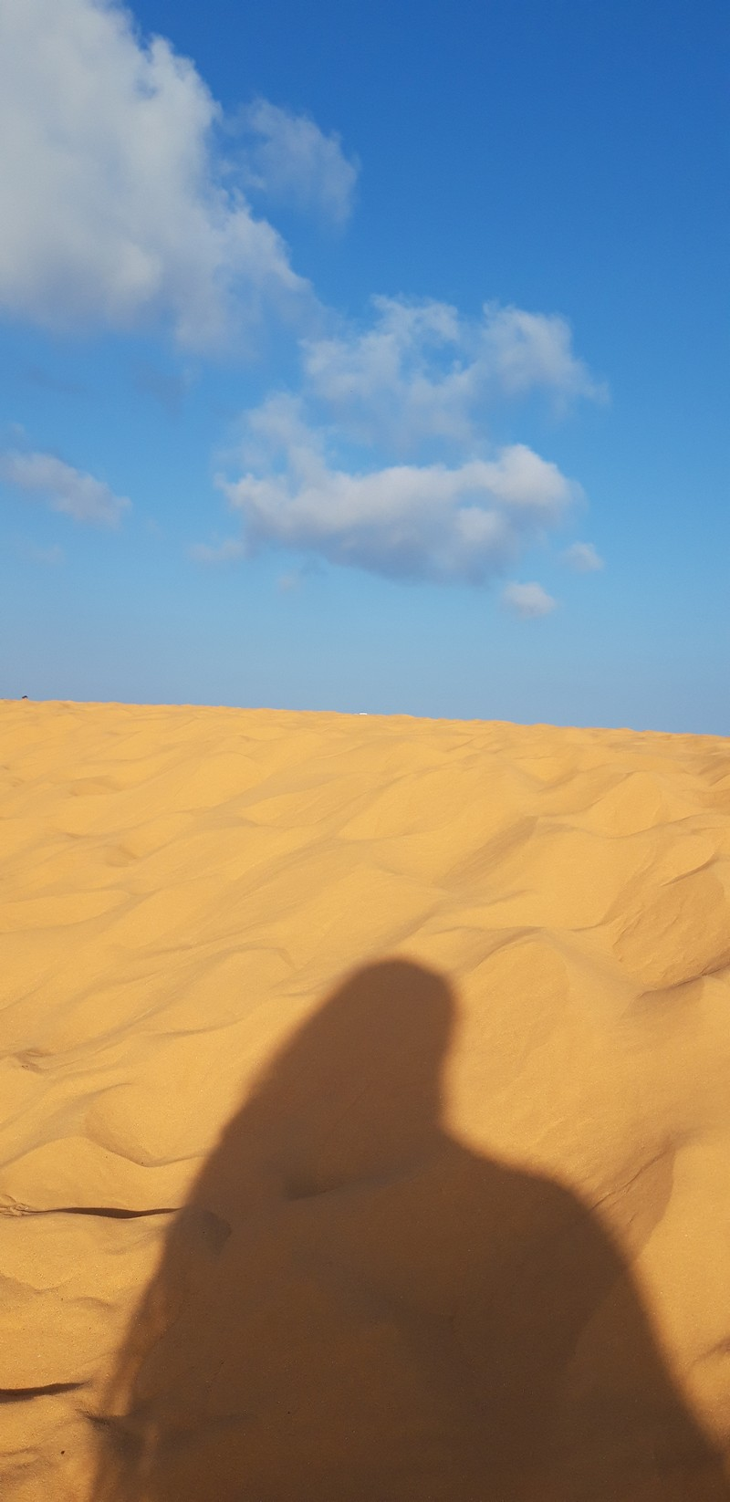 I had no idea that such a landscape that resembles a desert could be found in Vietnam at Mui Ne sand dunes, the biggest attraction in Mui Ne.