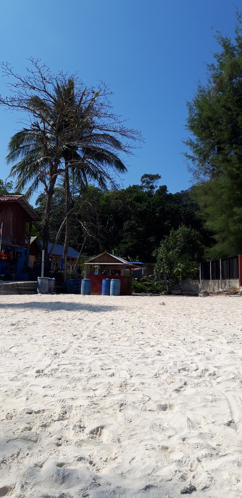 Jungle treks in Perhentian Islands are worthy and will connect you to other beaches on the island. I was in Flora Bay, a non-touristy spot.