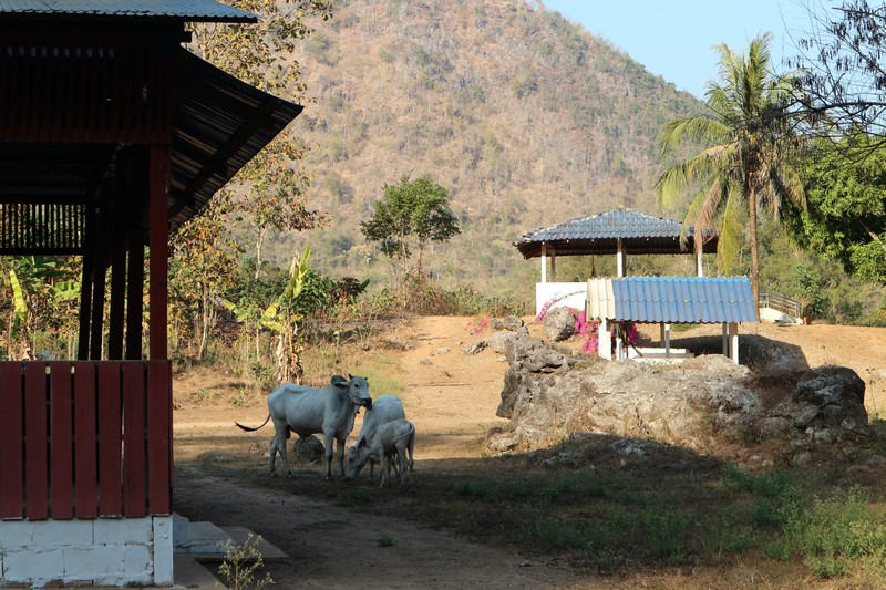 I'm already in Mu Aye Pu, the remote Myanmar village where I will volunteer. The place is peaceful and gorgeous.