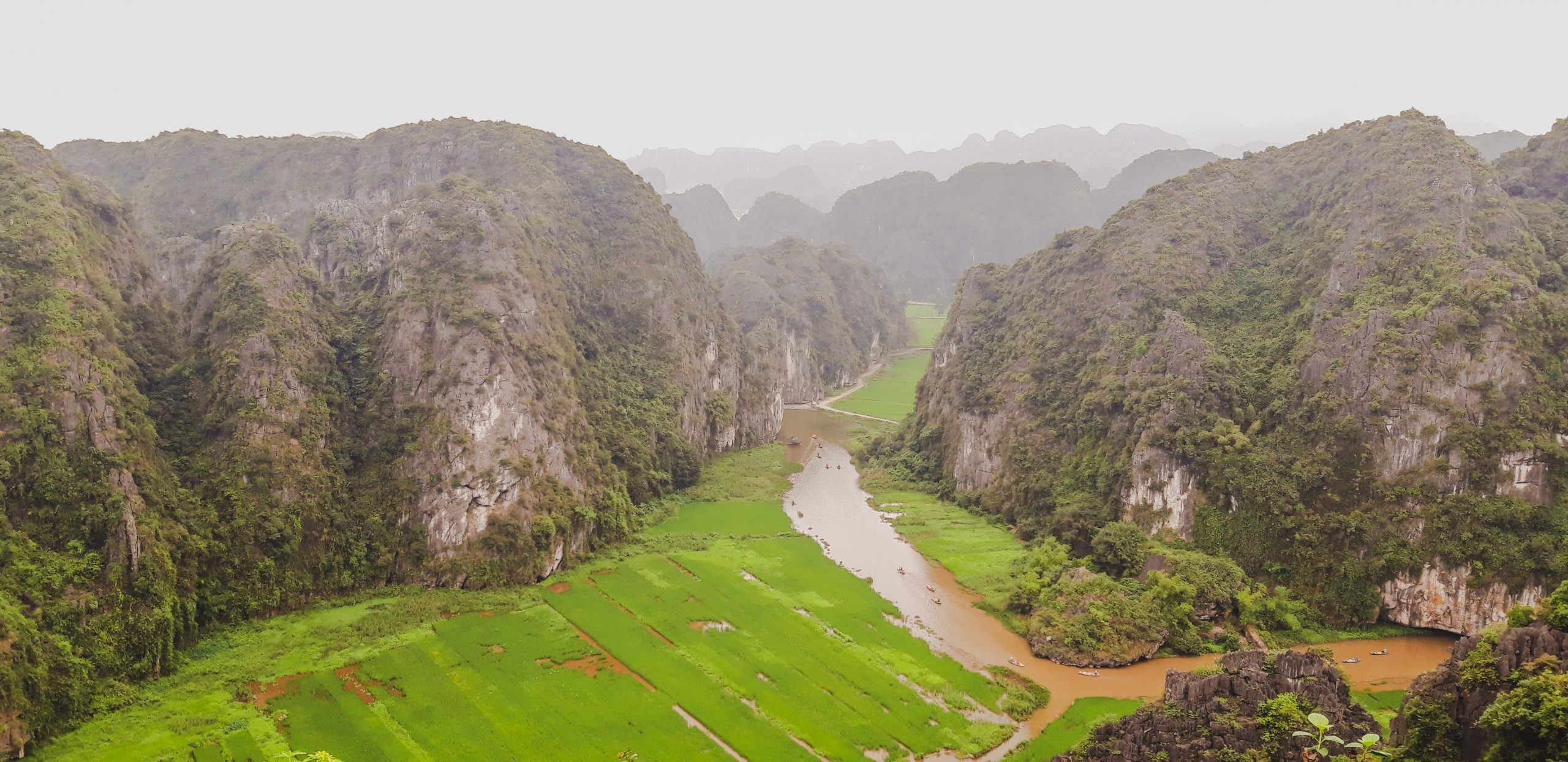 Through Tam Coc and Ninh Binh rice fields by bicycle