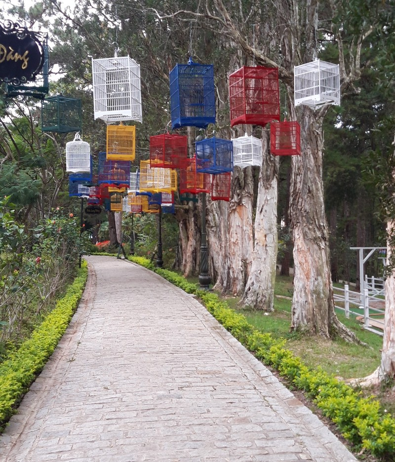 I found this surprisingly convenient Dalat tour. I usually don't like to join tours, but this one is different.